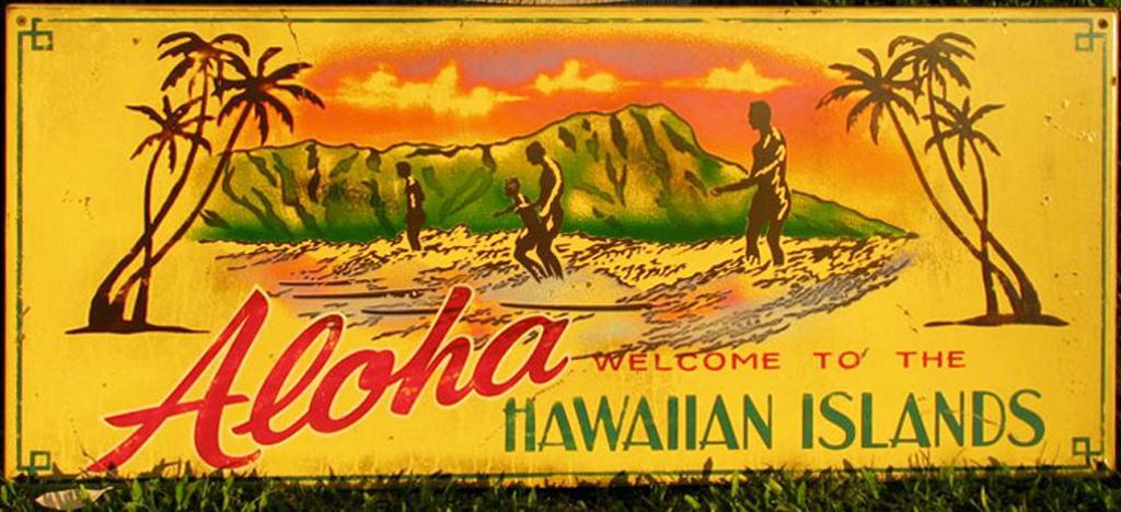 Aloha Hawaiian Islands by Steven Neill