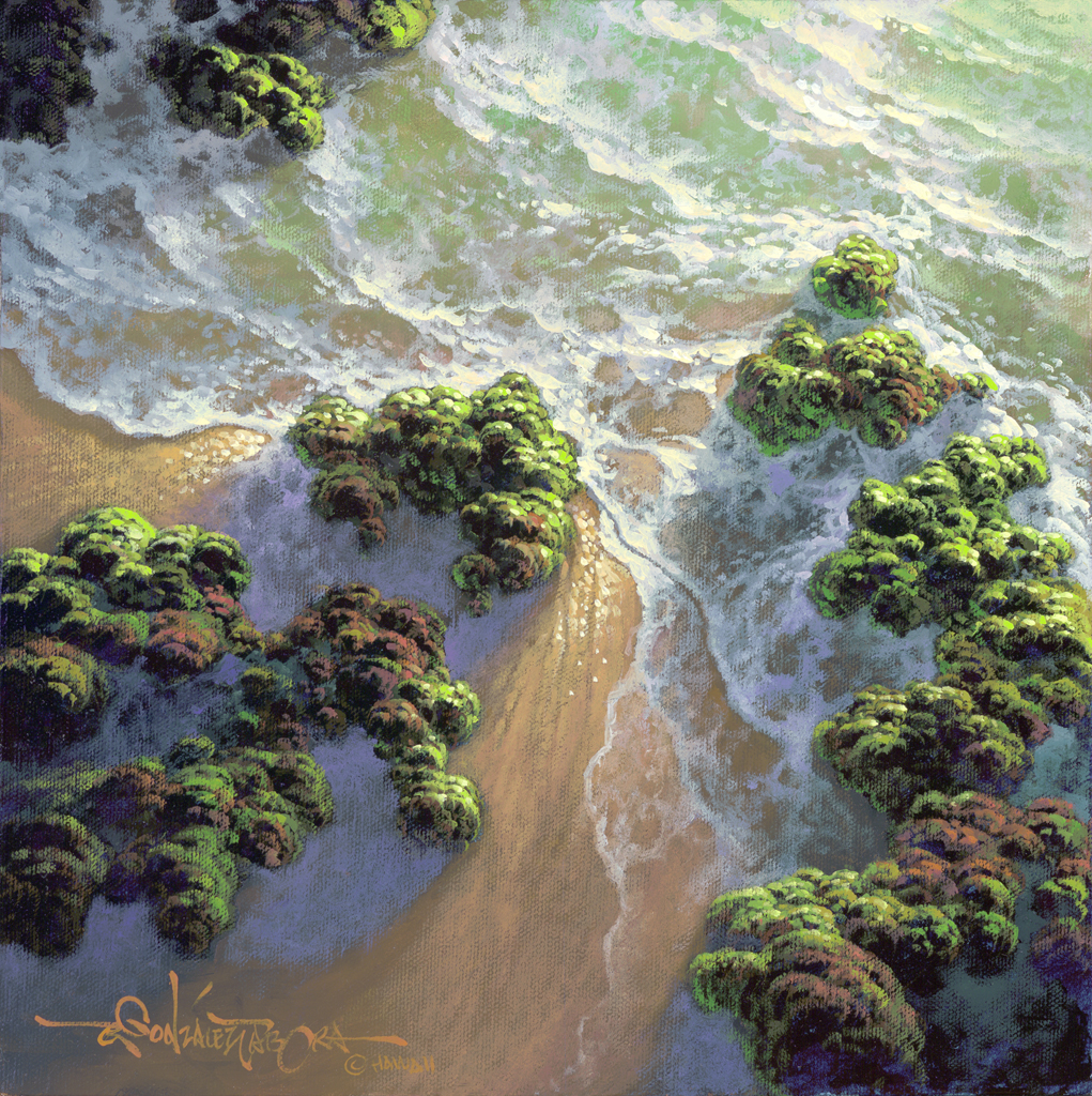 """Seaside Lace 12x12"""" by Roy Tabora"""