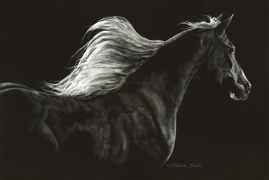 Soaring Spirit by Shalese Sands