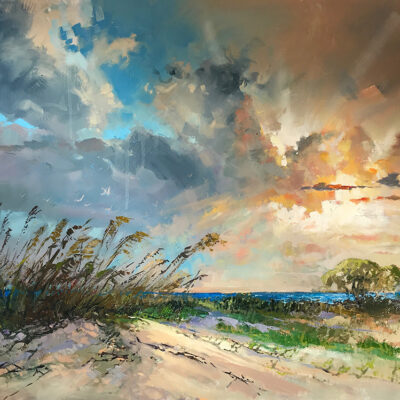 New Beginnings by Steven Quartly