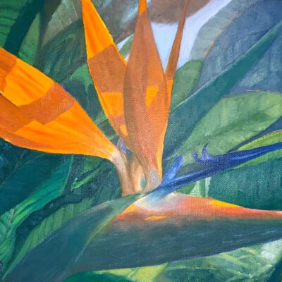 Bird of Paradise by Coco