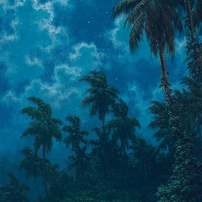 Midnight Wonderland by Roy Tabora