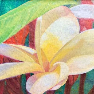 Plumeria by Coco