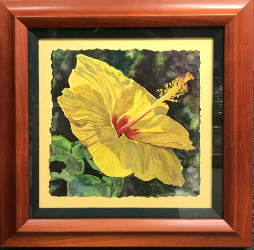 Yellow Hibiscus by Coco