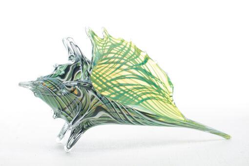 "Lime Zebra Shell 16.5"" L x 9.5"" w by Evan Schauss"